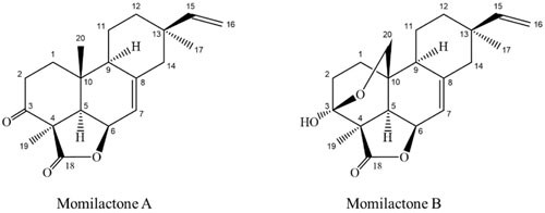 cấu trúc hóa học của hợp chất ma mb